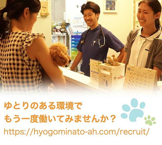 【急募】獣医さん・看護師さん募集☆兵庫みなと動物病院では、獣医師(パートタイム)と動物看護師(正社員・パート)を募集しています。ワークライフバランス重視で、比較的ゆとりのある職場です。セミリタイアされたママさん獣医さん看護師さんももう一度働いてみませんか?