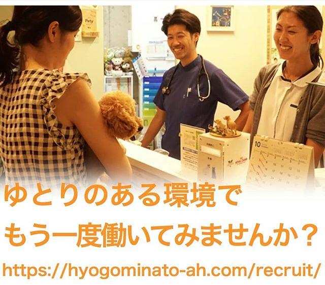 【急募】獣医さん・看護師さん募集兵庫みなと動物病院では、獣医師(パートタイム)と動物看護師(正社員・パート)を募集しています。ワークライフバランス重視で、比較的ゆとりのある職場です。セミリタイアされたママさん獣医さん看護師さんももう一度働いてみませんか?